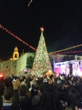 Christmas tree in Manger square